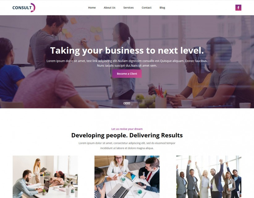 Consult - Consulting Company WordPress Theme