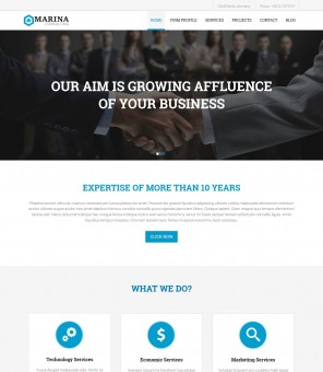 Marina - Joomla Template for Business Marketing Consultant