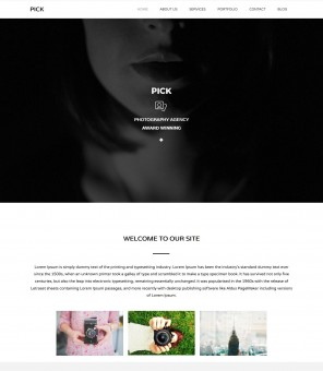 Pick - The Professional Photography Joomla Template