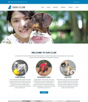 Dog Club - Drupal Theme for Dog Club