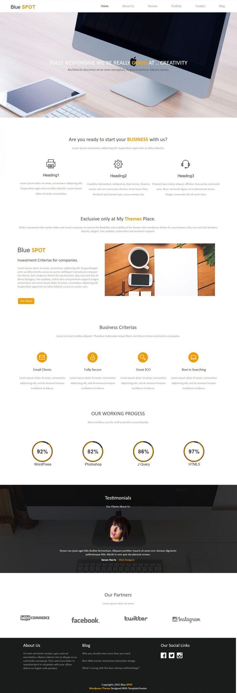 Blue Spot - Web Design/Studio Drupal Theme