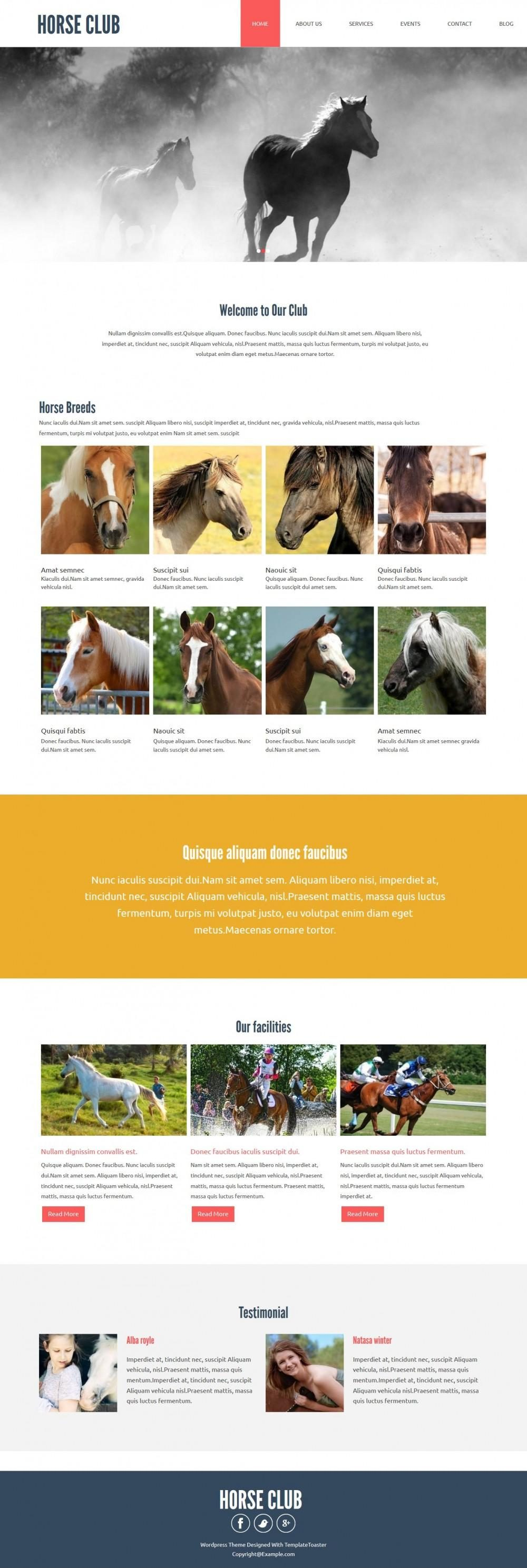 horse club joomla template for horse riding club