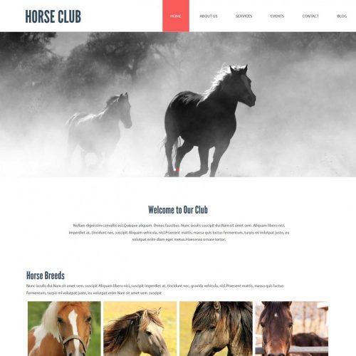horse club joomla template for horse riding club