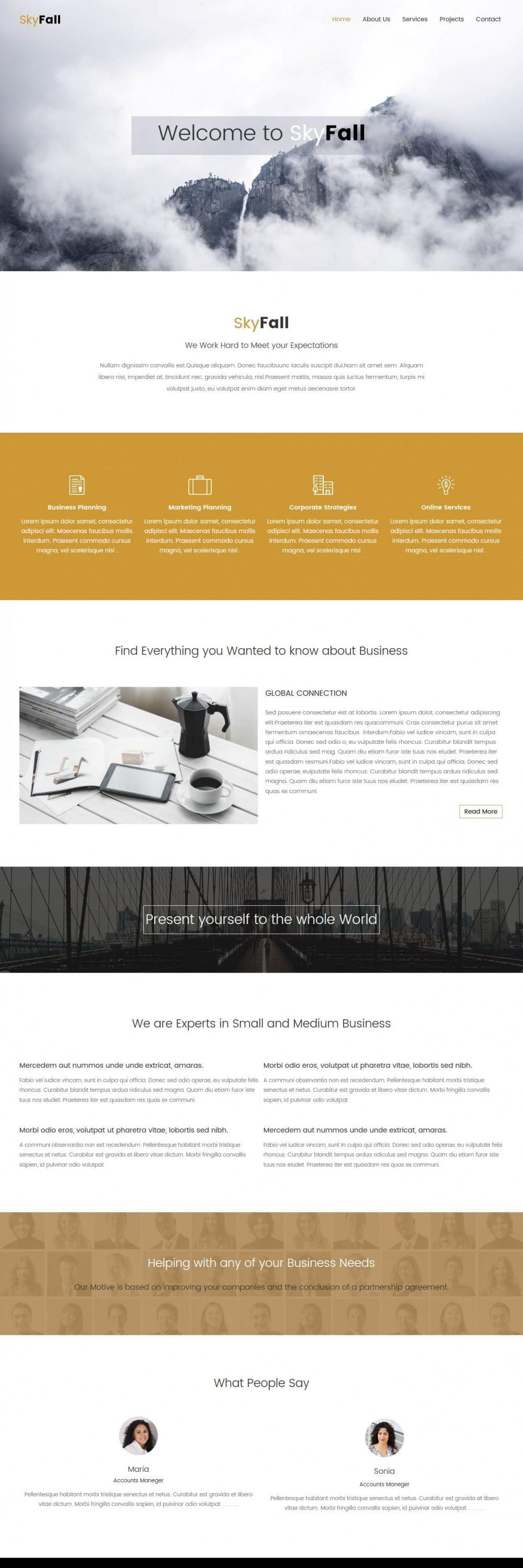 skyfall joomla template for business strategy agency