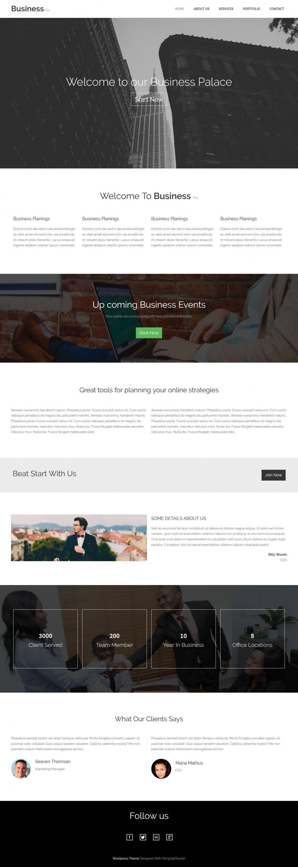 Business Consultant - Marketing And Business Consultant WordPress Theme