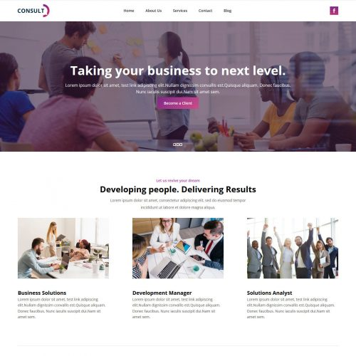Consult Consulting Company Free WordPress Theme
