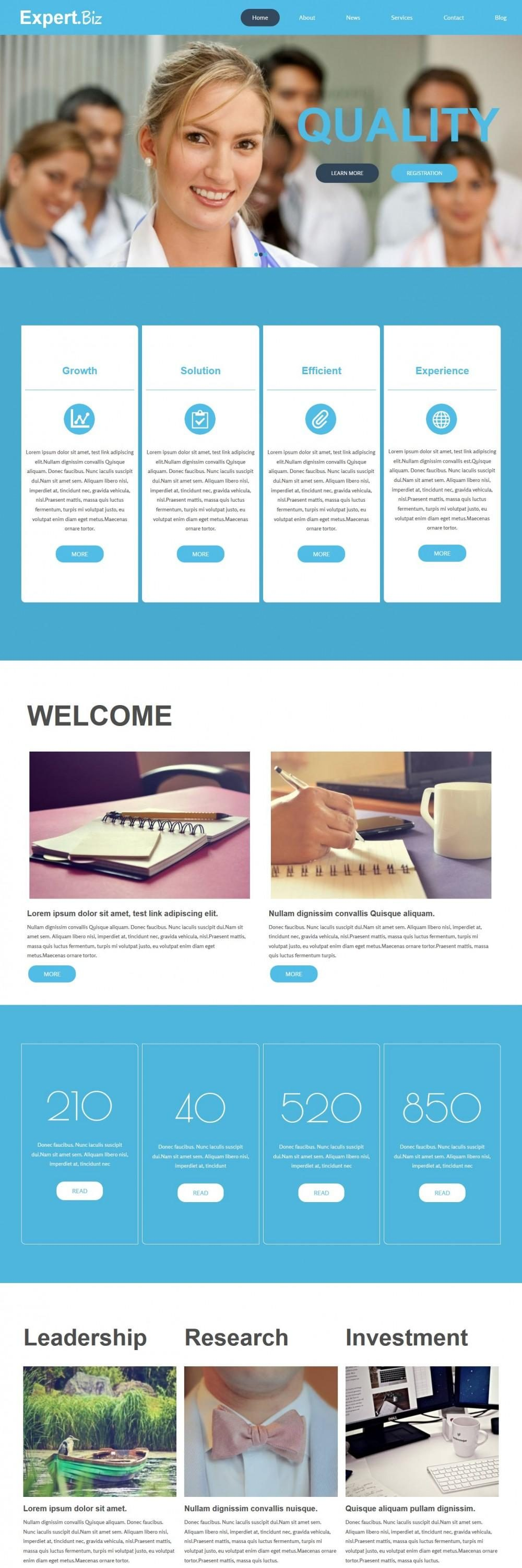 Expert Biz - Business WordPress Theme for Expert Advisor