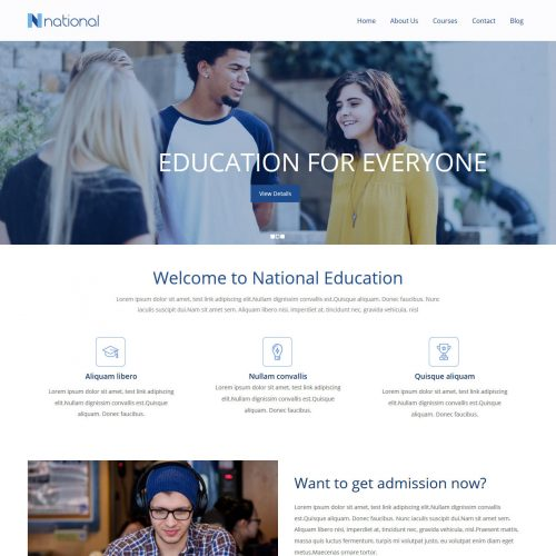 National Institute Training Institute Free WordPress Theme