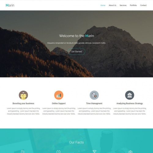 Marin - Responsive Business Promoting WordPress Theme