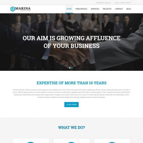 Marina - WordPress Theme for Business Marketing Consultant