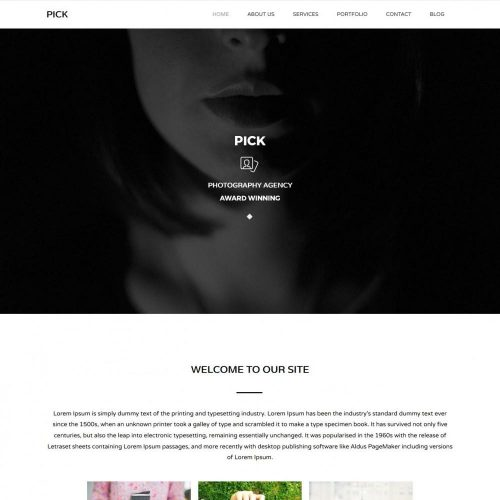 Pick - Photography WordPress Theme for Individual/Company