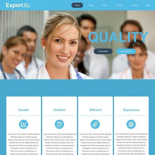 expert biz business advisor blogger template