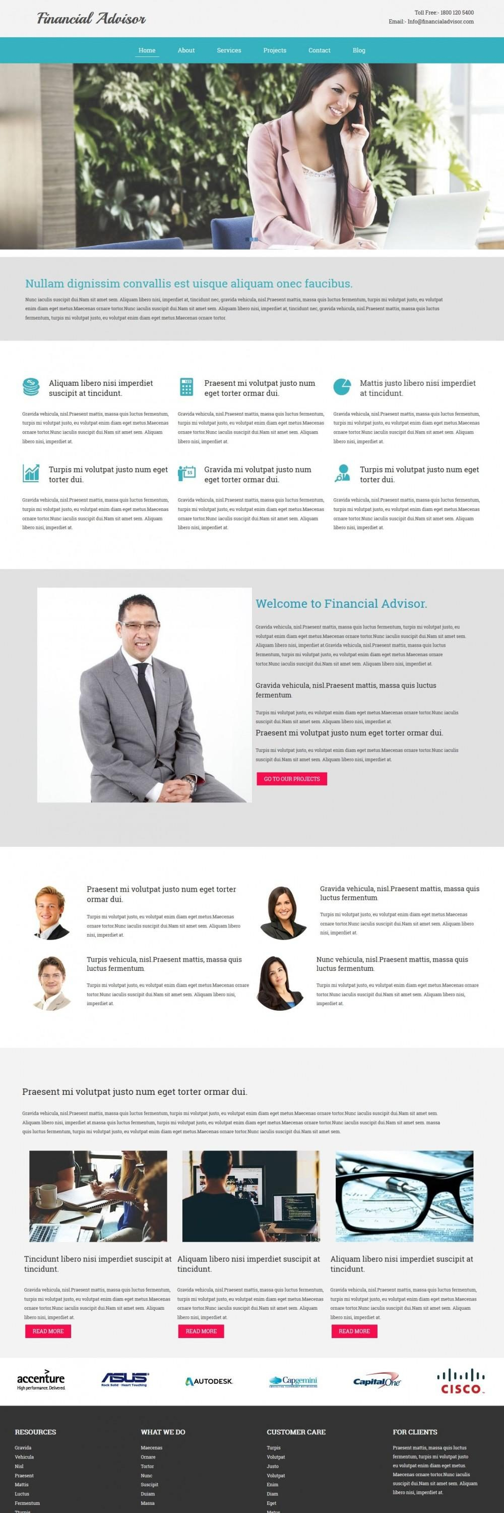 finance advisor blogger template