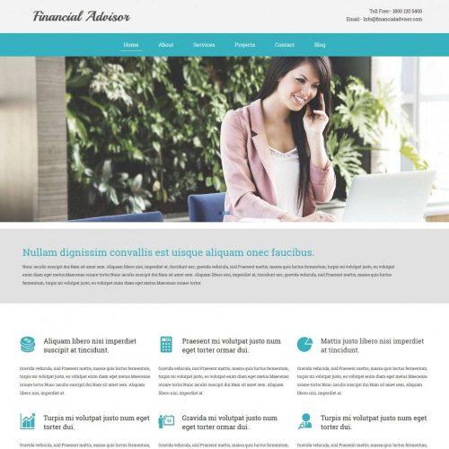 finance advisor blogger template