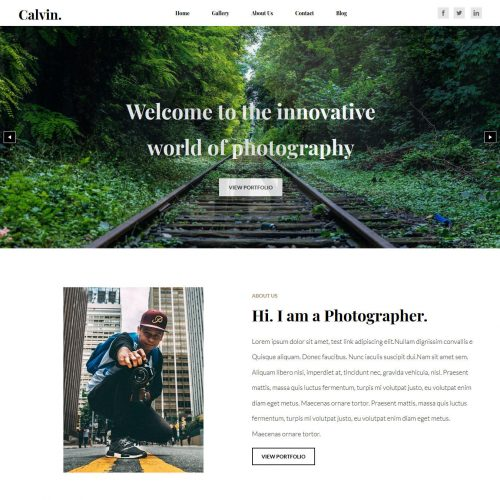 Calvin Photography Blogger Template