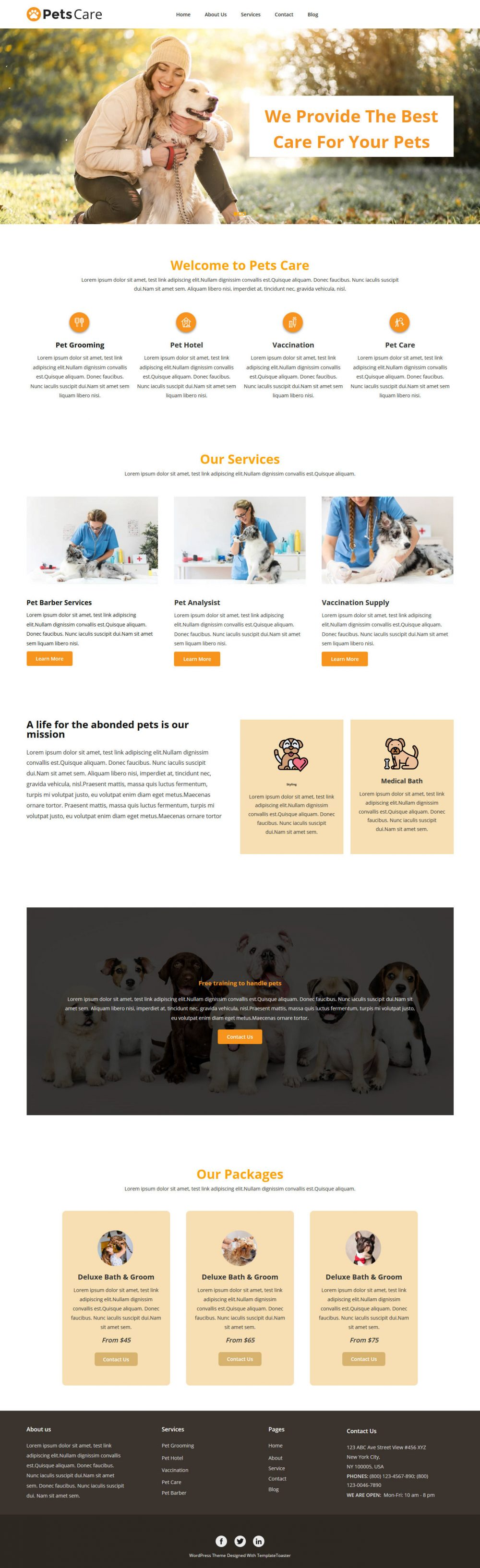 PetsCare Pets Grooming Blogger Template