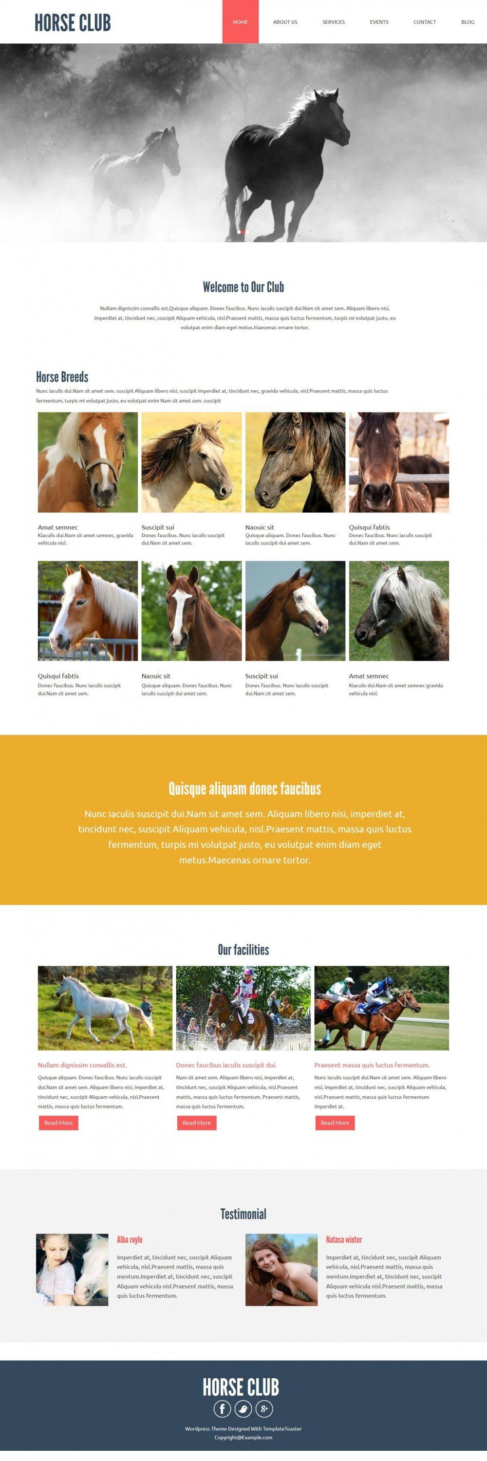 horse club blogger template
