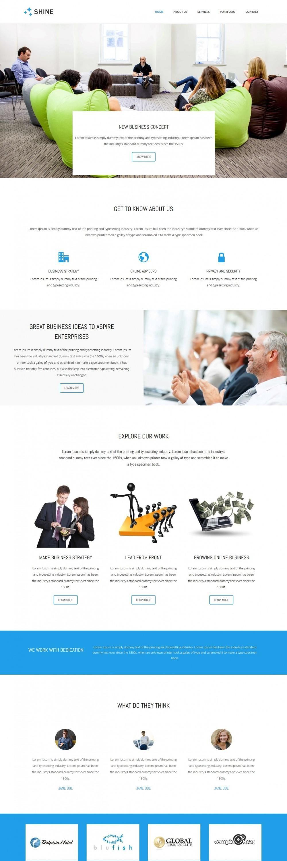 shine business advisor blogger template