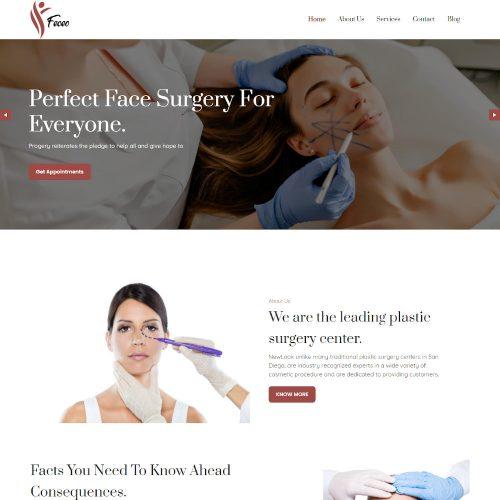 Feceo- Plastic Surgery WordPress Theme