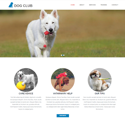 Pets and Animals Drupal Themes