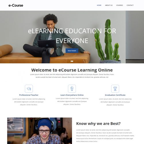 E-course-Online-learning-Education-Template